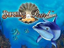 Dolphin's Pearl Deluxe - игровые автоматы Чемпион