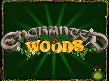 Автомат Вулкан Enchanted Woods на деньги